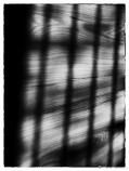 Cienie / Shadows